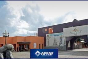 ASPPAF avalia possibilidade de colapso funerário no Paraná